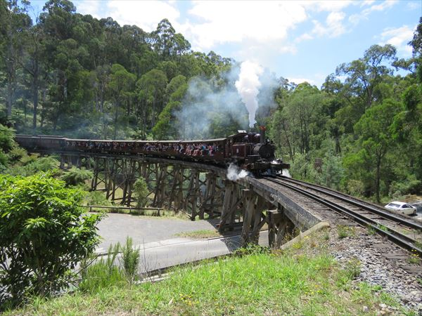 puffing_billy_2016_01_(13)_s