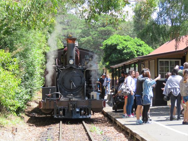 puffing_billy_2016_01_(29)_s