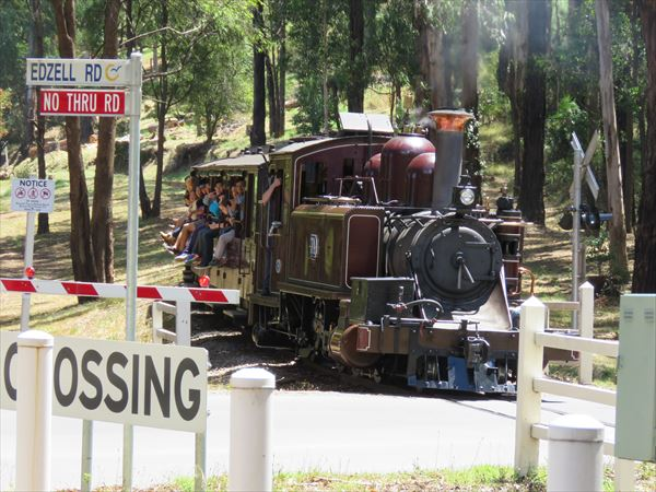 puffing_billy_2016_01_(45)_s