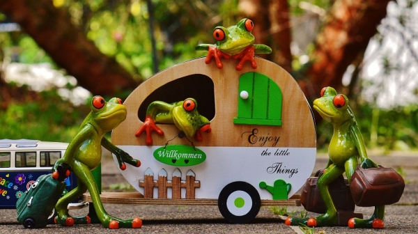 frogs-1358815_1280