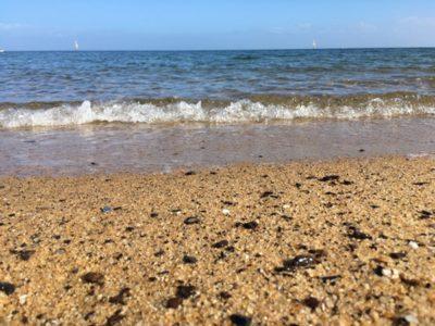 宝物探しにメルボルンのビーチへ出かけてみよう。貝殻、シーグラス、夢のかけらを見つけよう!