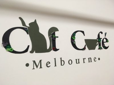 ただ猫がいるだけじゃない!メルボルンの猫カフェは○○の空間だった!