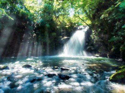 日本こそラッキーカントリー!海外在住者の目から見た日本の素晴らしい点7つ