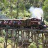 メルボルンの蒸気機関車、パッフィンビリーはこうやって楽しもう!
